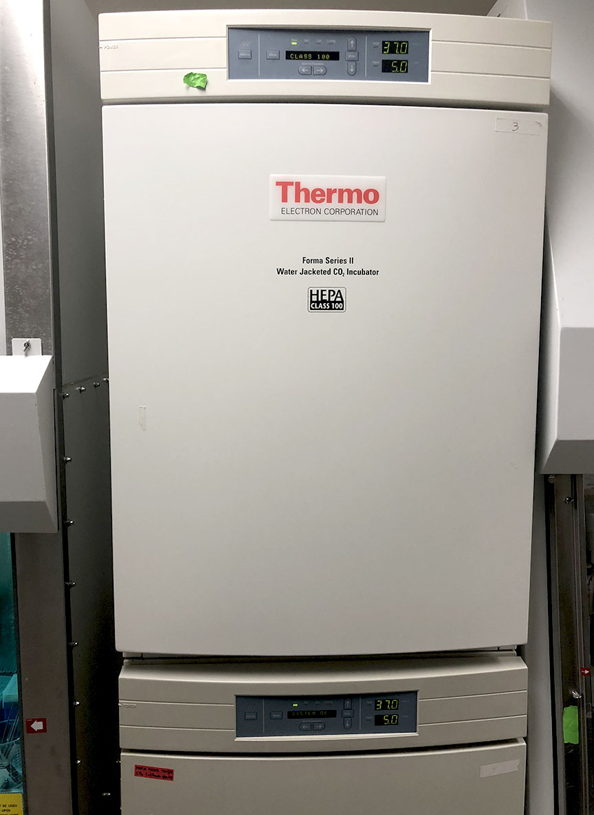 Thermo cell incubator - Tang Lab