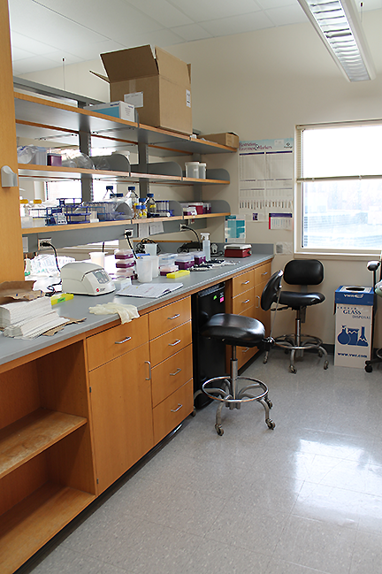 Jiang Lab - work area