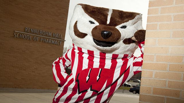 Bucky Badger at Rennebohm Hall