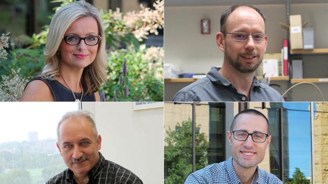 Beth Martin, Tim Bugni, Sandro Mecozzi, Joe Zorek