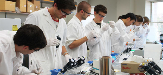 Pharmacology-Toxicology students work on an experiment in lab.